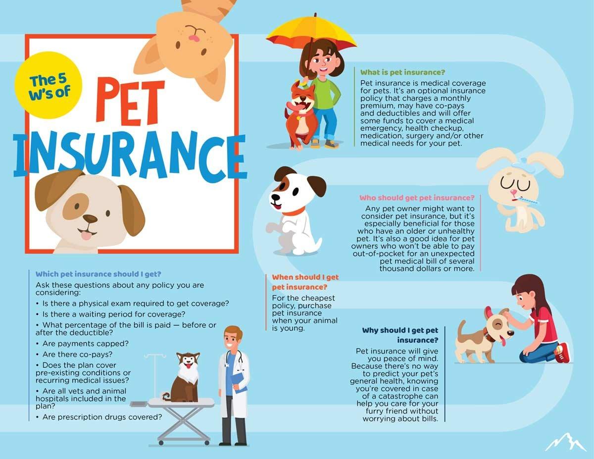 Pet-Insurance-Infographic
